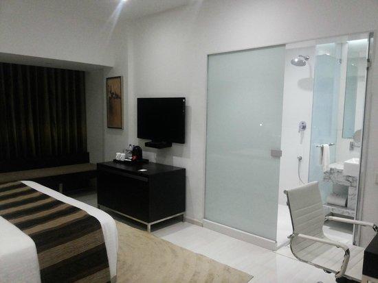 Clarion Chennai: Main room and washroom
