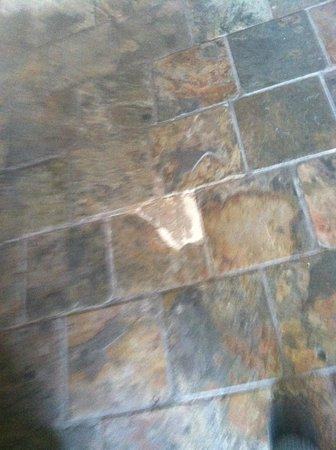 Quality Inn: hallway in need or repair