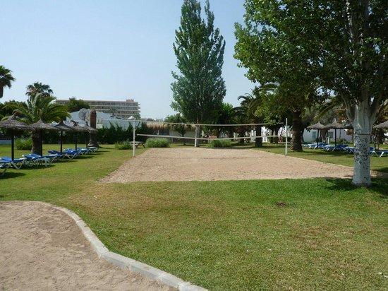 Seaclub Mediterranean Resort: Volleyball court