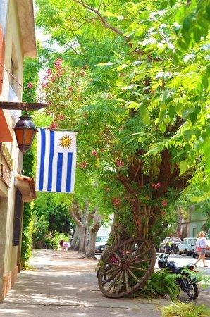 Barrio Historico: コロニア