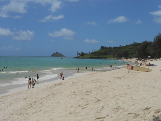 The Hula Breeze : Kailua Beach only a short walk from apartment