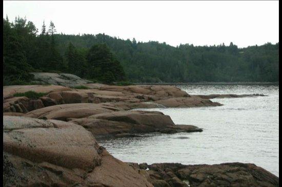 Sentier de la Pointe-de-l'Islet Trail : Trail edge.