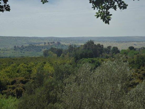 Tel Dan: Вид со смотровой площадки