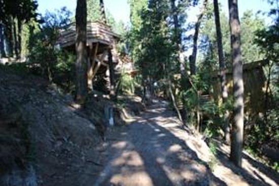 cabane  Foto di Les Cabanes dans les Bois, Villalier