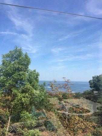 Panorama De Luxe: вид