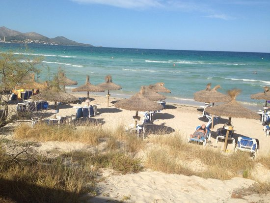 IBEROSTAR Playa de Muro: La playa justo al lado de la piscina