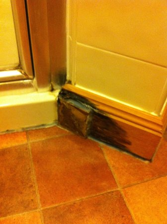 Longleat: Water Damaged Skirtings