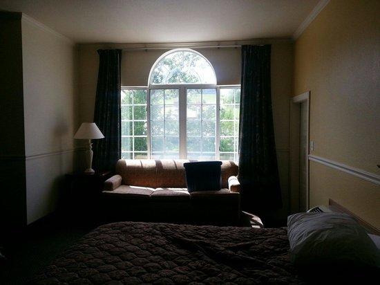 Carriage House Inn: Amazing lighting from the large window and super comfy bed.