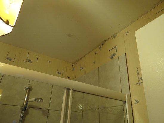 Le Logis de Mousterlin : plafond salle bain moisi