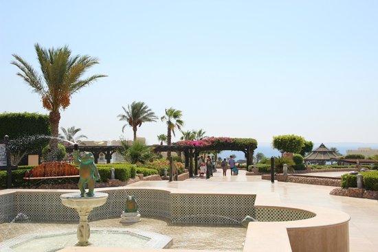 Sea Life Resort: 7