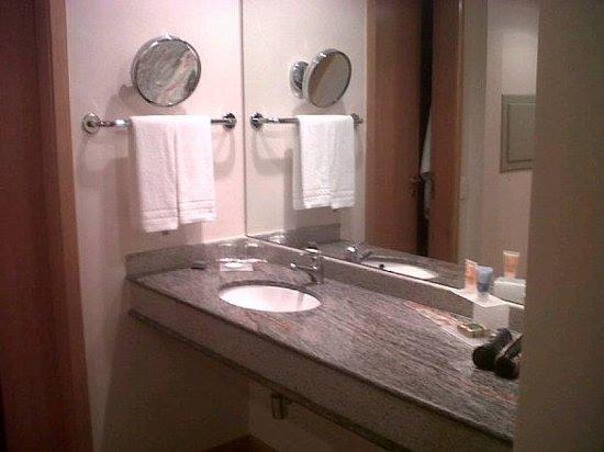 Bourbon Alphaville Business Hotel : Due