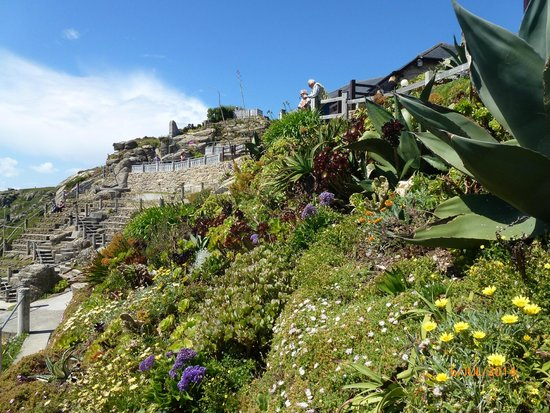 Minack Theatre : Beautiful gardens at the Minack