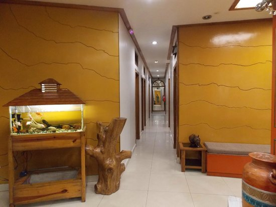 Ashutosh Inn: hotel view