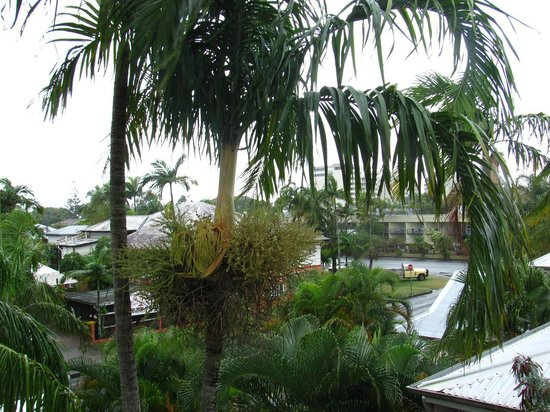 Reef Palms : View from Balcony