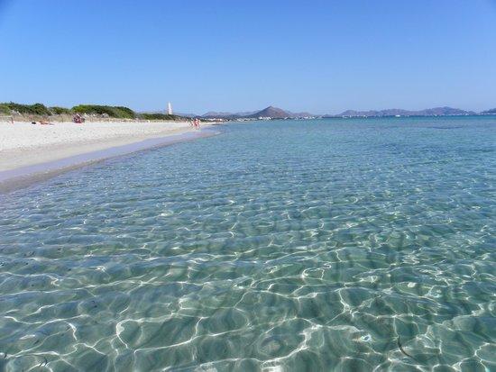 Valentin Playa de Muro: Spiaggia e mare