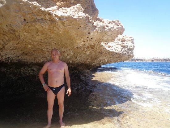 Sharm Reef Hotel: риф