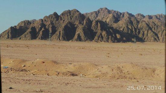 Jaz Mirabel Beach: desert
