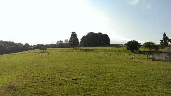 Tom's Barn: Vue depuis la terrasse