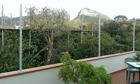 Villa Maresca: La terrazza di una delle due camere