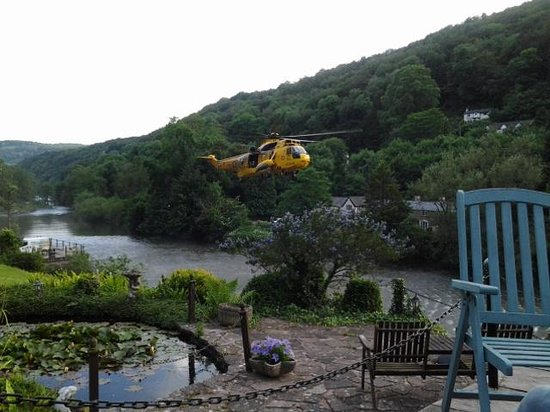 Forest View Guest House : rescue took place while we were there