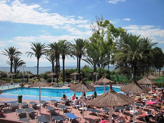 The New Algarb Hotel: La piscina e le ... palme