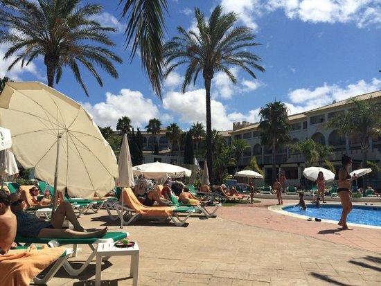 Hotel Fuerte Conil - Costa Luz : Muy buena piscina