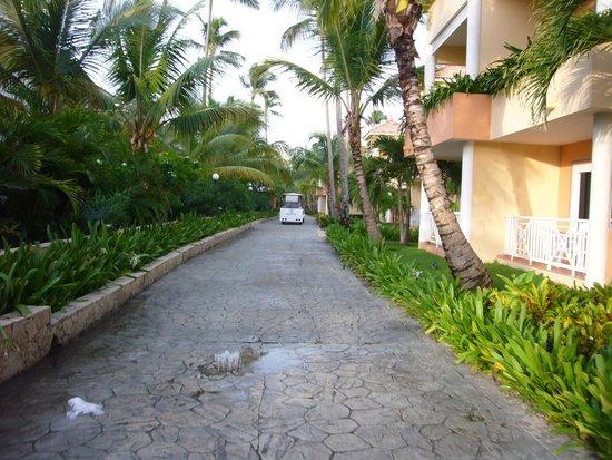 Grand Bahia Principe Bavaro : Vista dos quartos por fora