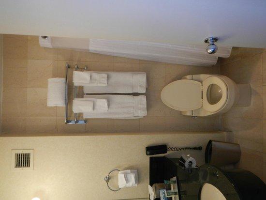 Millenium Hilton: Bathroom