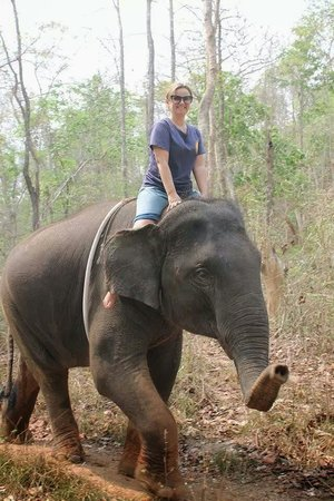 Chiang Mai Elephant Care - Day Tours: Passeando