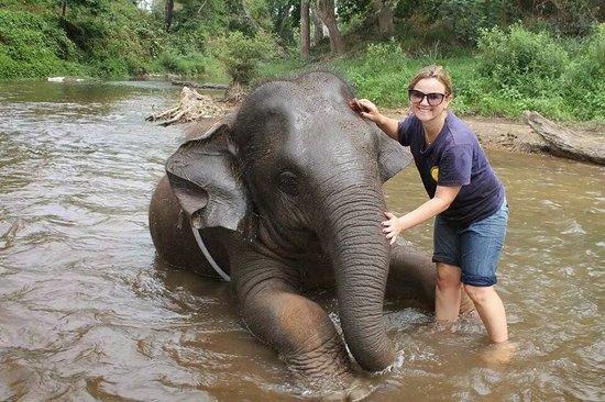Chiang Mai Elephant Care - Day Tours: Dando banho