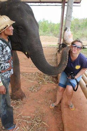 Chiang Mai Elephant Care - Day Tours: Beijoca