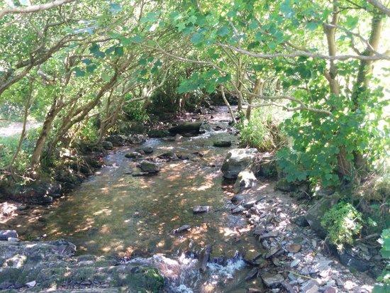 Shelley's: Heddon Valley walk