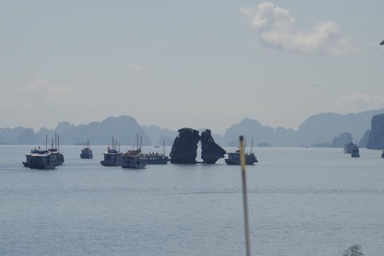 Halong Emotion Cruises Private Charter: 闘鶏岩