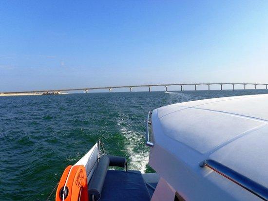 Dream'On Catamaran : après avoir passé le pont, direction l'ile d'aix