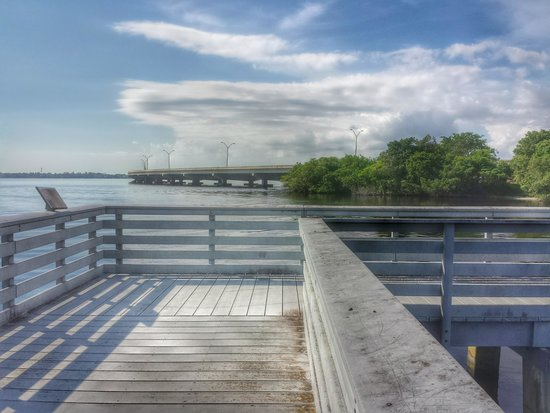 Four Mile Cove Ecological Preserve: View of Midpoint Bridge