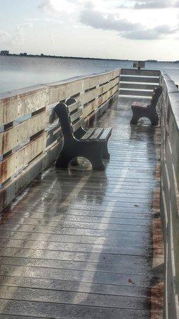 Four Mile Cove Ecological Preserve: Rainy Morning