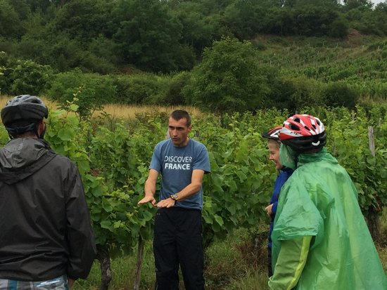 Bourgogne Evasion: Florian describing the soil and growing of the grapes