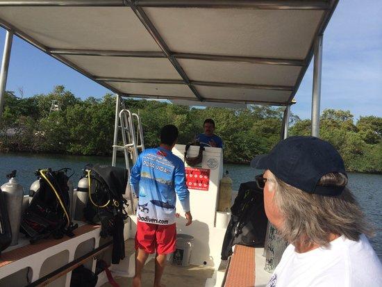 BA Divers : Leaving Flamingo beach