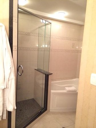 Hilton Garden Inn Bangor: biggest shower ever !!!  pres suite