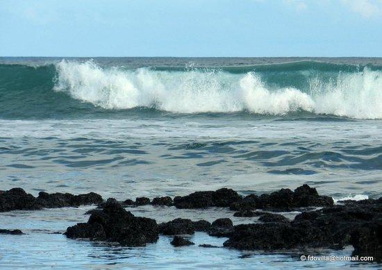 Galapagos Beach at Tortuga Bay : PLAYA BAHIA TORTUGAS - ISLAS GALAPAGOS - MAYO 2014