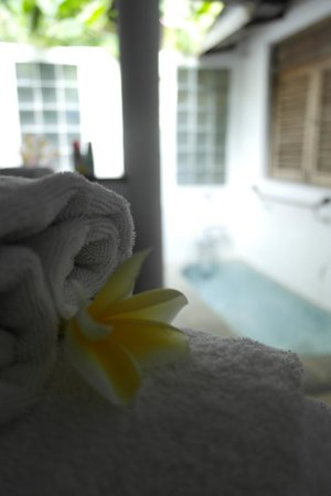Taman Wana Ayurvedic Luxury Hotel and Villas in Seminyak : salle de bain
