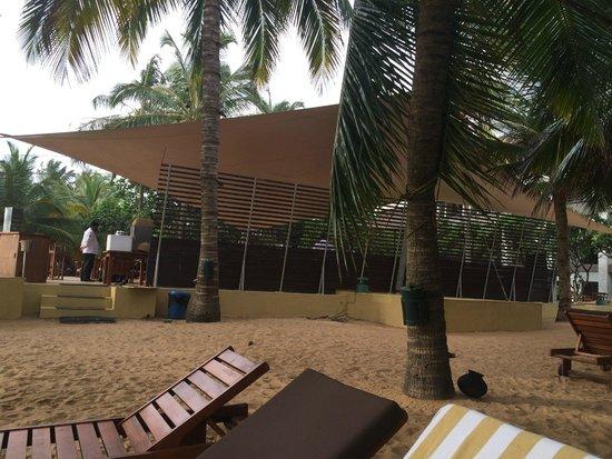 Jetwing Beach: the beach