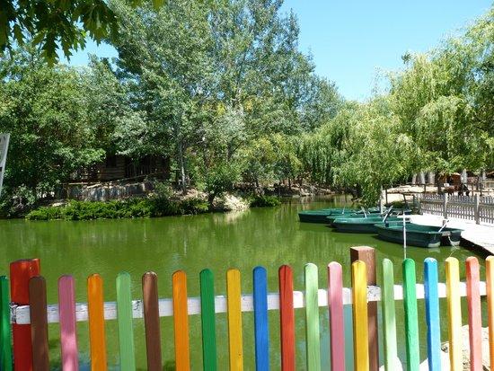 Petit Paradis de Vendargues: parc