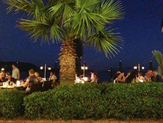 The Lemon Tree Restaurant: Lemon Tree Restaurant