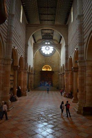 Basilica di San Zeno Maggiore: Navata