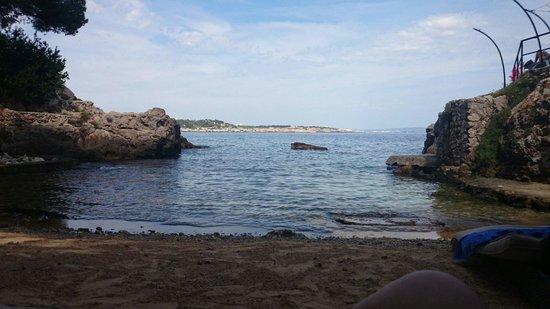 Barcelo Illetas Albatros: Hotel beach