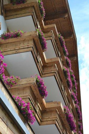 Theresia Gartenhotel : Hotel flowers