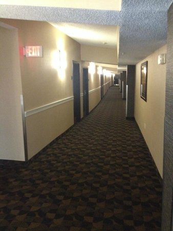 Best Western Plus Newark Airport West : Corridor
