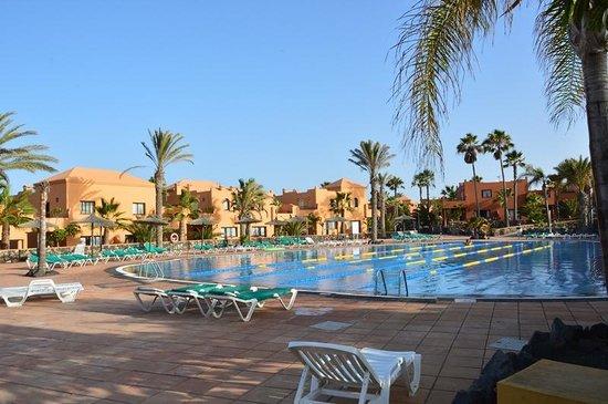 Oasis Papagayo Sport & Family: piscina per sport
