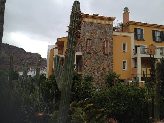 Cordial Mogán Playa: Cactus Garden